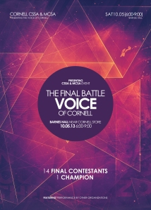 Voices 2013 POSTER